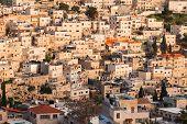 Arab Homes On The Hillside Of Mount Of Olives In Jerusalem