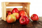 Spilled red apples near crate on wooden table isolated on white