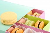 Gentle colorful macaroons in box isolated on white