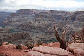 Grand Canyon, Arizona, Usa Colorado River