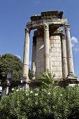 Temple Of Vesta In Roman Forum
