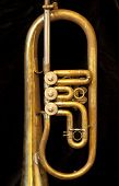 pic of jericho  - Close up of an old and shiny trumpet - JPG