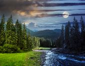 Mountain River In Pine Forest Day And Night