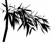 illustration with black bamboo branch silhouette isolated on white background