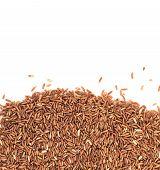 Raw Brown Rice On White