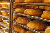 Golden Fresh Baked Bread