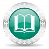 book green icon, christmas button