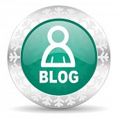 blog green icon, christmas button