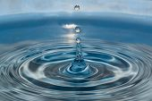 Water Droplets Clear