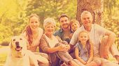 stock photo of extended family  - Portrait of an extended family with their pet dog sitting at the park - JPG