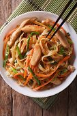 Chow Mein With Chicken And Vegetables, Top View Vertical poster