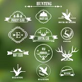pic of duck-hunting  - Hunting club label collecton - JPG