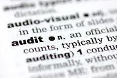 Definition Of Audit
