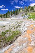 Upper Geyser Basin Of Yellowstone
