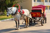 stock photo of troika  - dappled horse in red gear with a russian tradition wagon is waiting for fare passengers in the light of the spring sun - JPG