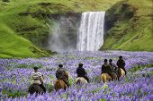 Tourists Ride Horses At The Majestic Skogafoss Waterfall In Countryside Of Iceland In Summer. Skogaf poster