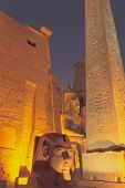 The Entrance To The Luxor Temple At Night (egypt)