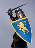 Постер, плакат: Средневековый рыцарь изолированные на сером фоне