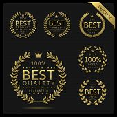 Golden Laurel Wreath Label Badge Set Isolated. Best Quality, Best Offer, Best Buy. Vector Illustrati poster
