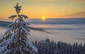Mountains Covered With Mist In The Middle Of Composition. Morning Sun Illuminate Clouds (mist). Snow poster