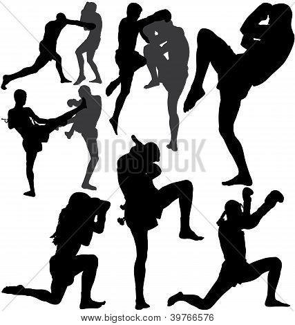 Muay Thai Thai Boxing vector