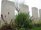 Gravestones From First World War
