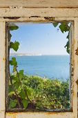 View Of The Sea Through An Ivy Covered Window Frame