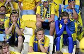 Swedish Soccer Fans