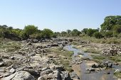 Tarangire River With Lots Of Stones