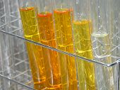 stock photo of chromatography  - test tubes lined up in a rack containing colored fractions taken from a column chromatography separation - JPG