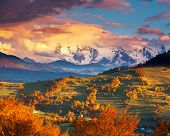 pic of snow clouds  - Majestic morning mountain landscape with colorful forest - JPG