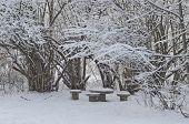 Beautiful nook for repose at winter