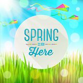Spring greeting round banner against a outdoor landscape with fresh grass and colorful kites - vecto