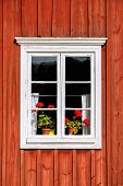 White Window With Red Flowers