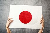 Man Holding Banner With Japanese Flag.