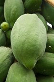 stock photo of papaya  - Carica papaya Linn - JPG