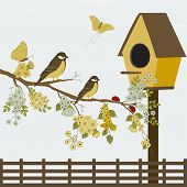 stock photo of bird fence  - A branch with flowers and birds - JPG