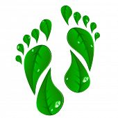 stock photo of carbon-footprint  - detailed illustration of footprints made of green leafs - JPG
