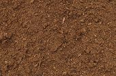 Peat Turf Macro Closeup, Large Detailed Brown Organic Humus Soil Background Pattern, Horizontal