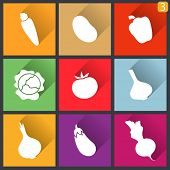 image of red shallot  - Flat design icons - JPG