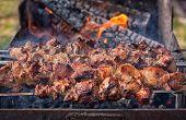 Shish Kebab On Skewers On The Fire