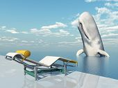 Deck Chair and Sperm Whale