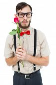 Geeky hipster offering a rose on white background