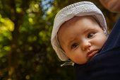 Baby boy in a sling