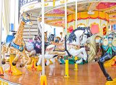 picture of riding-crop  - Carousel horse on a traditional fun fair ride - JPG