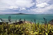 Rangitoto Island, Waitemata Harbor,Auckland City, New Zealand