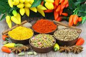 Selection of Indian spices and chilies