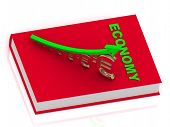 Economy Book And Statuette Growing Golden Euro