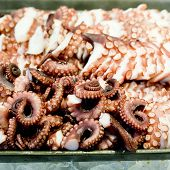 Octopus Fresh Raw Sashimi Buffet, Japanese Sushi