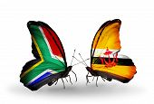 Two Butterflies With Flags On Wings As Symbol Of Relations South Africa And Brunei